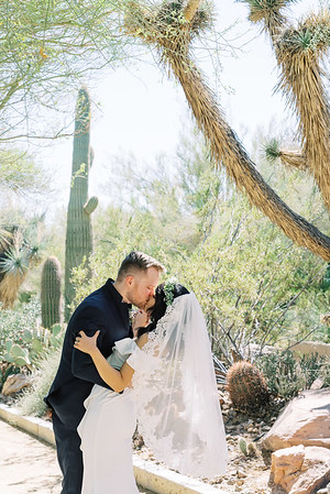 Springs Preserve Las Vegas Intimate Wedding Venue - Kristen Kay Photography | #catci #outdoorceremony #desertwedding #veil