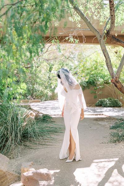 Springs Preserve Butterfly Habitat - Las Vegas Intimate Wedding Venue - desert elopement - Kristen Kay Photography | #veil #simplegown #nature #outdoorceremony #filmphotographer #lasvegasphotographer #vegasweddingphotographer #intimatewedding #elopement