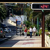 Walking down the Botanico Avenue to downtown Puerto de a Cruz Sunday February 26 2012.