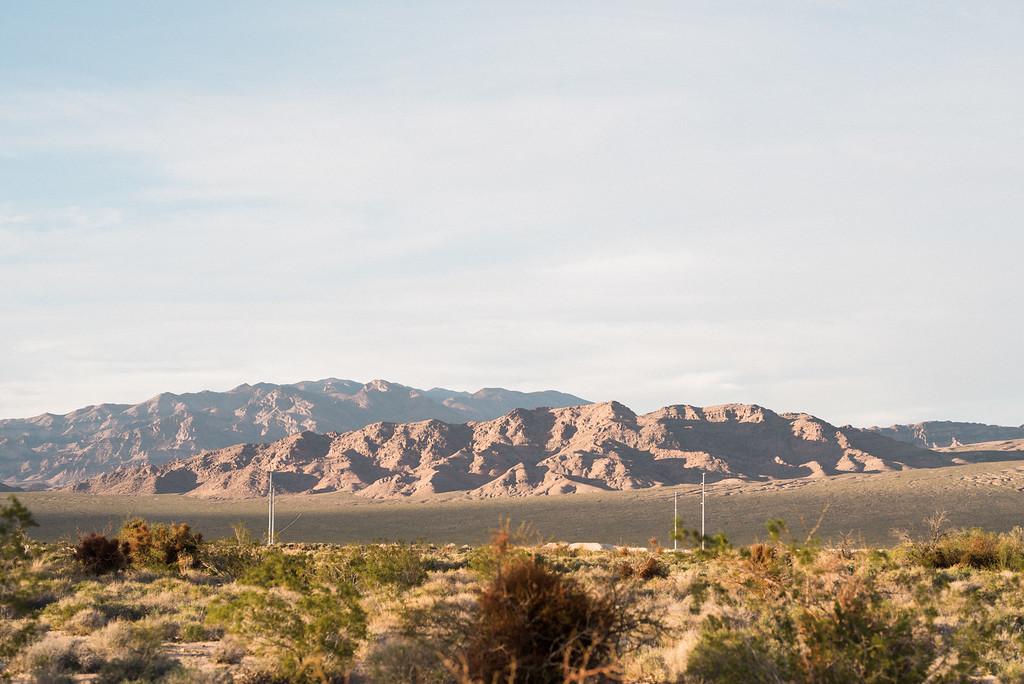Las Vegas Vow Renewal Floyd Lamb Park