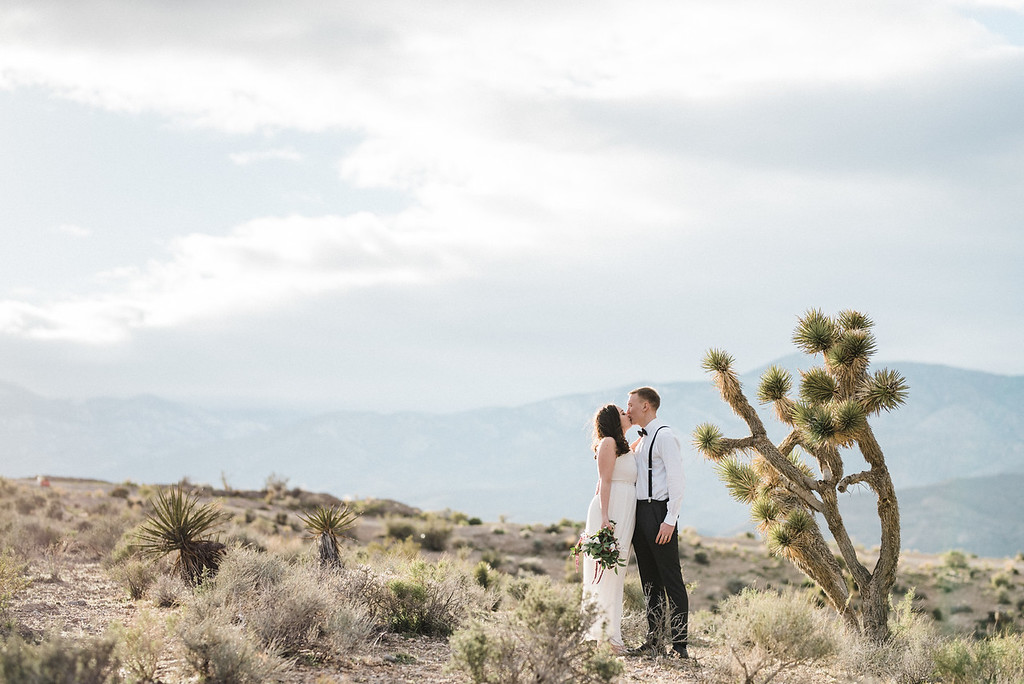 Ida & Jimmy Mt. Charleston Elopement