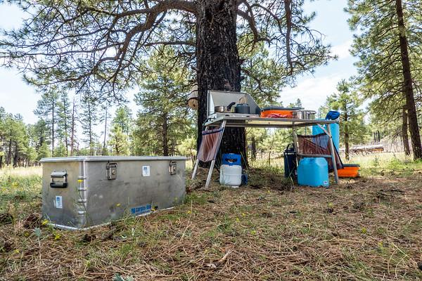 campsite. Apache National Forest, Arizona USA