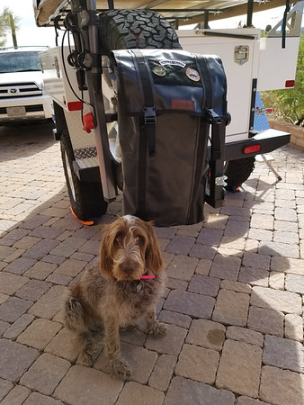 Blue Ridge Overland Gear Trash Bag