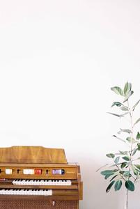 LAS VEGAS WEDDING CHAPELS - a modern downtown chapel - Downtown Las Vegas modern, minimal, natural light wedding chapel - organ - Kristen Kay Photography - Kristen Krehbiel - Sure Thing Chapel by Flora Pop - Las Vegas Wedding and Las Vegas Elopement Chapel - quick and easy wedding - #chapel #lasvegas