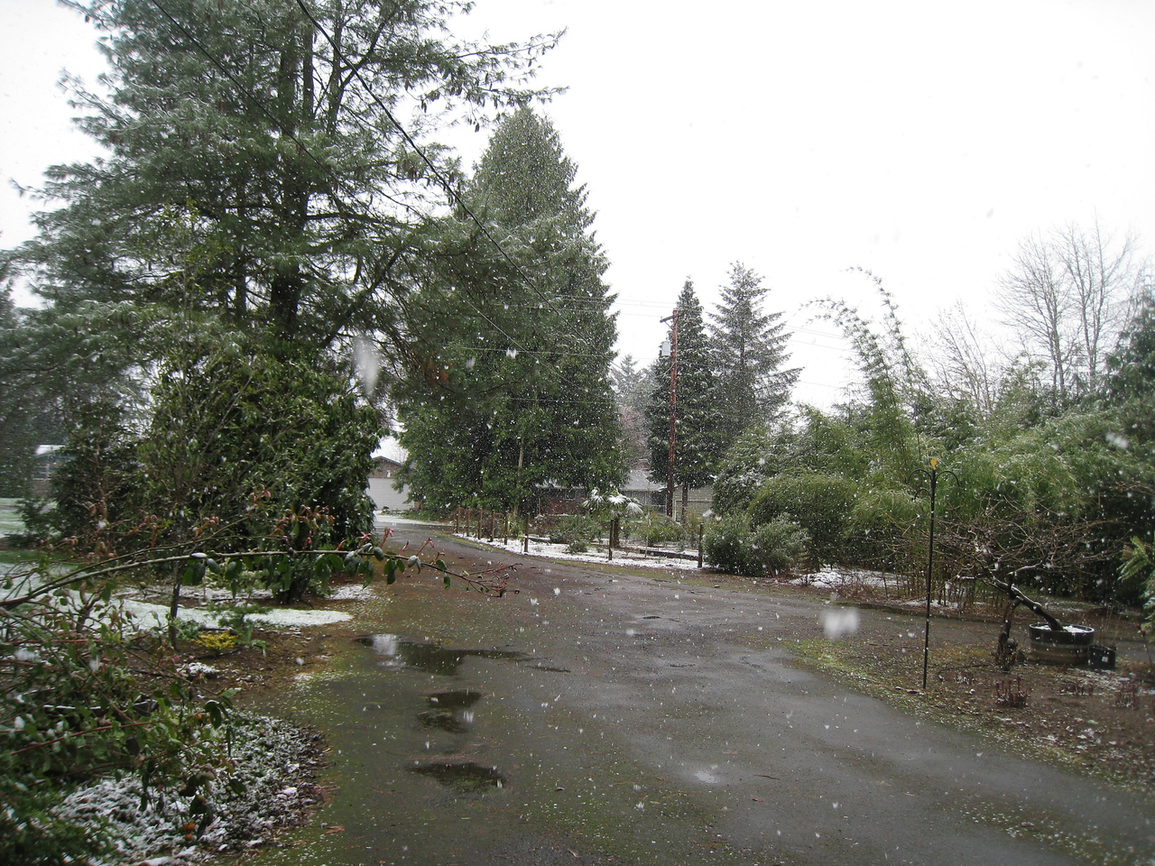 April 5th, another lovely Spring day in Oregon!