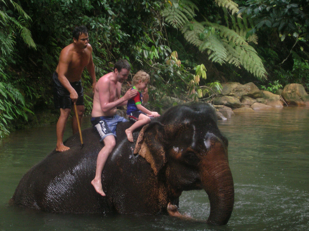 Tracey sent us this great photo, brother George & nephew Charlie Taming the Wildlife of Thailand on their way to Australia :^)..