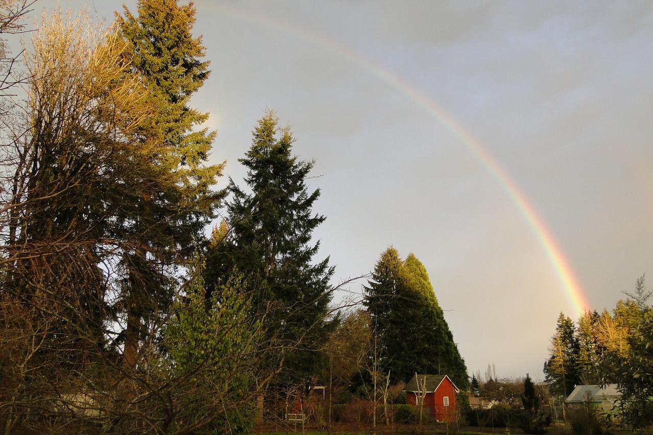 A Morning Rainbow