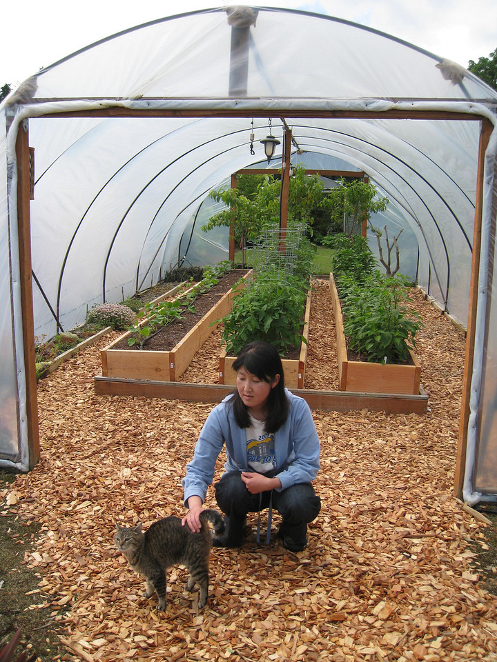Chiyoko & Pickle checking out the tomato house.