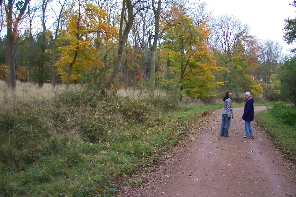 Dad sent us this photo of Mum & Anwen at Fineshade Wood October 30th 2008