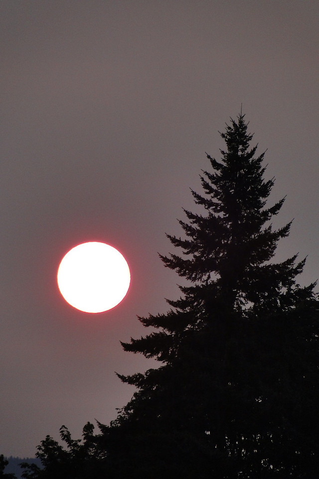Lots of wood smoke from forest fires in the air this week. This is what the Sun looked like at 6:15 am the other morning.