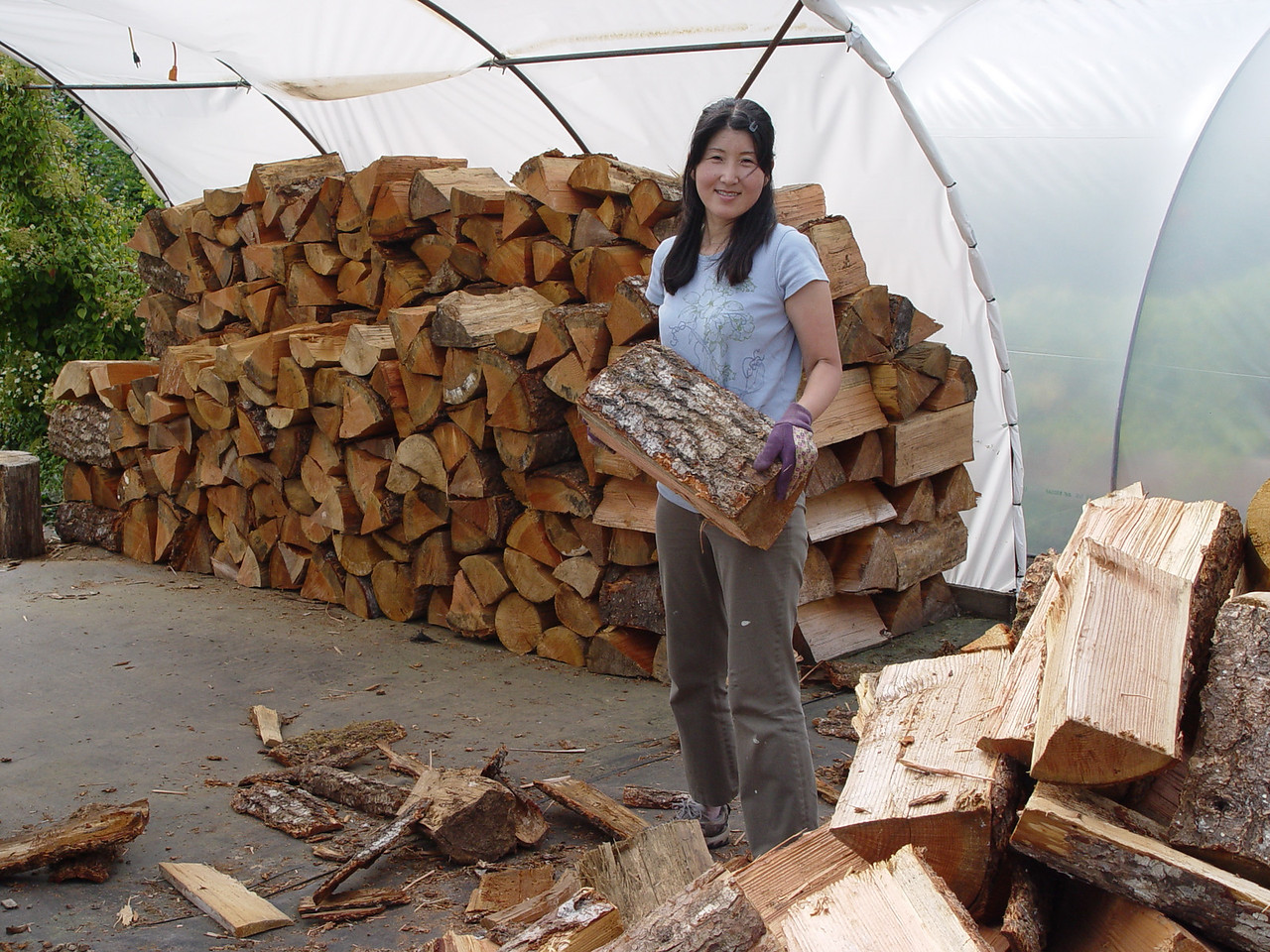 Chiyoko stacks firewood for the winter...