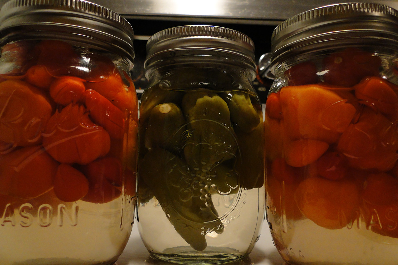 Home grown & pickled Shishito (green) & Habanero (red/orange) peppers..