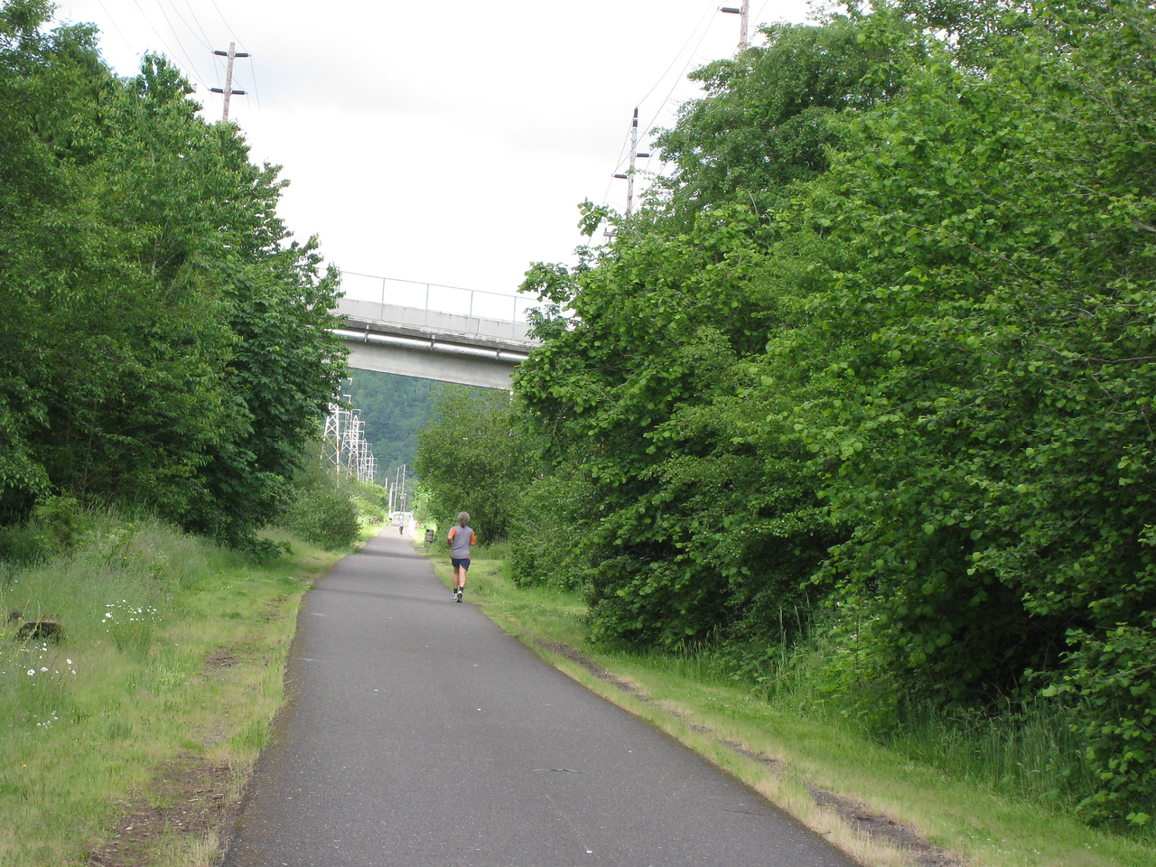 Sunday June 8th - The first run to Portland of the year! While I ran from Gresham to Portland Waterfront Park on the Spring Water Trail Chiyoko followed on the bike :^)..