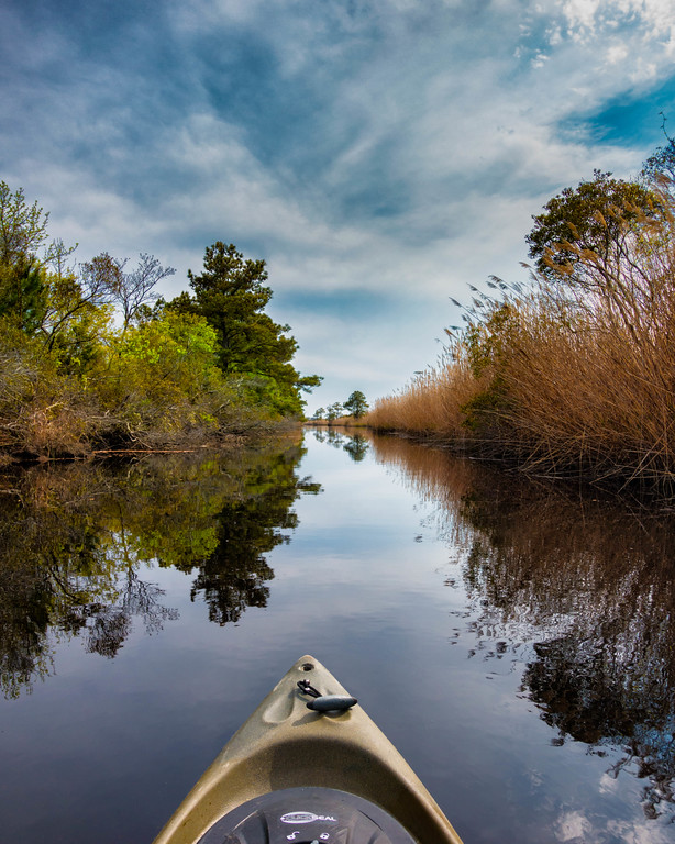 Such amazing views on our kayak trip in Virginia Beach