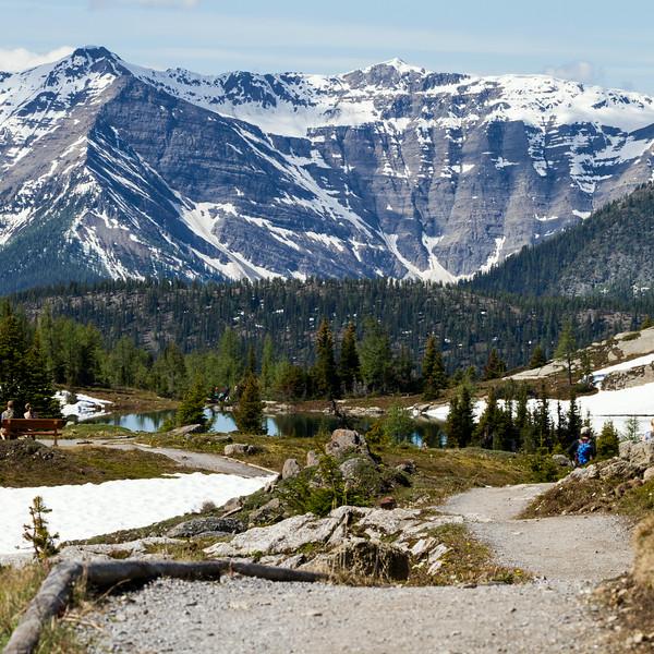 Path to Rock Isle Lake