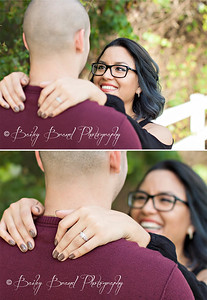 Professional Engagement Portraits