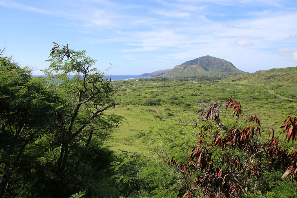 A glimpse of Koko Head crater in the distance