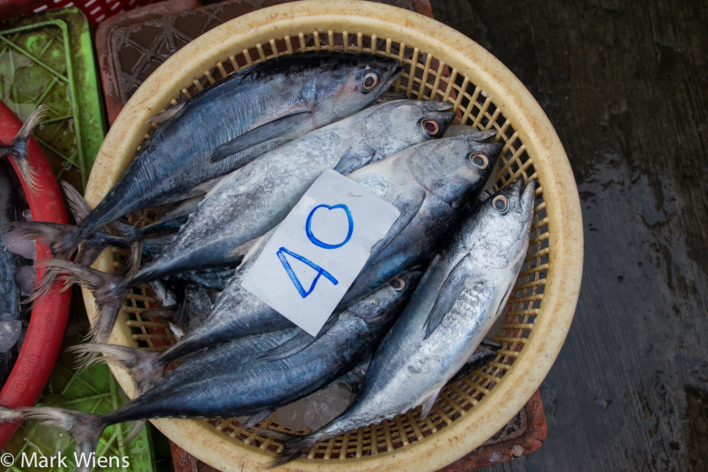 samut prakan market 3 X2 Samut Prakan   Visiting Pak Nam Seafood Market (ตลาดปากน้ำ)