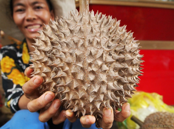 durian fruit 7 640x480 How to Love Durian on Your First Bite (Or Increase Your Chances)