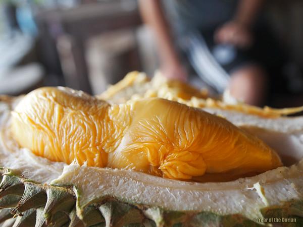 How does durian taste