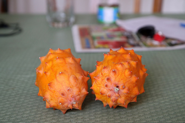 what is a kiwano melon