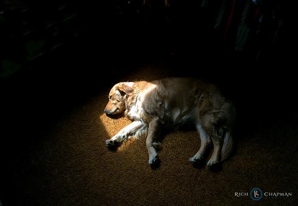 Golden Slumbers