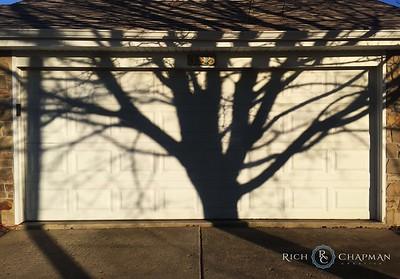 Garage Door Tree Silhouette