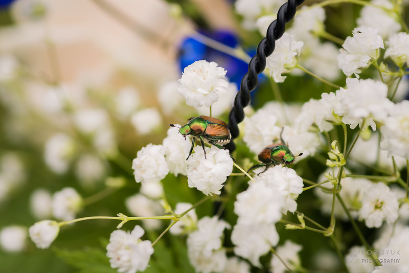longlook-farm-wedding-photos-5838