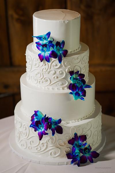 longlook-farm-wedding-photos-4592