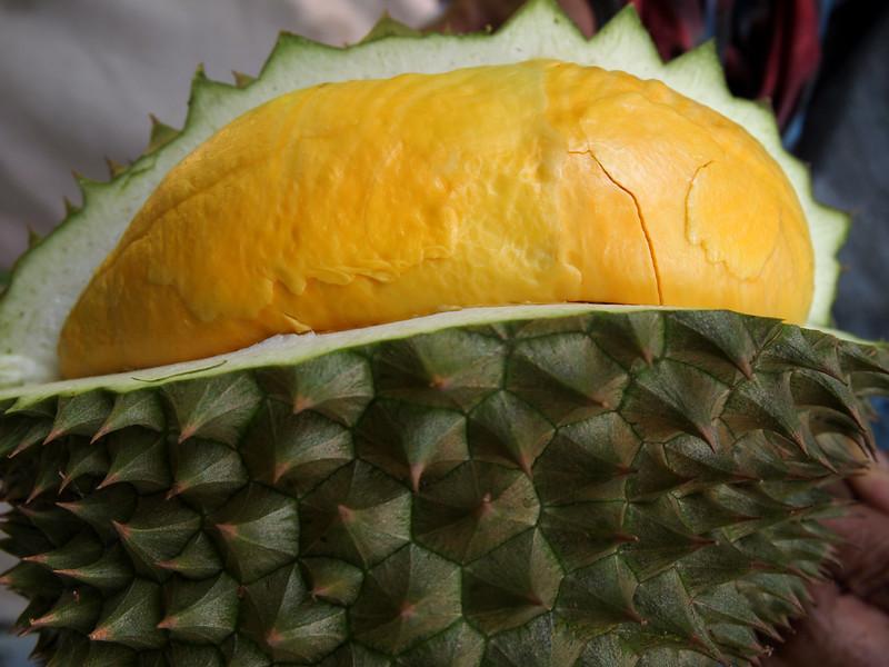 Kradum Si Nak Durian
