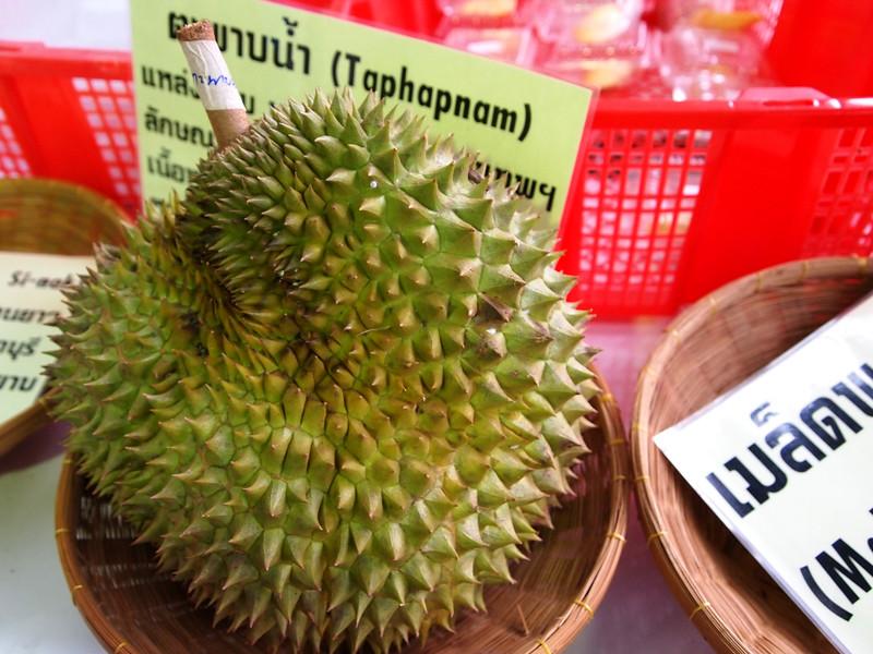 Taphapnam Durian
