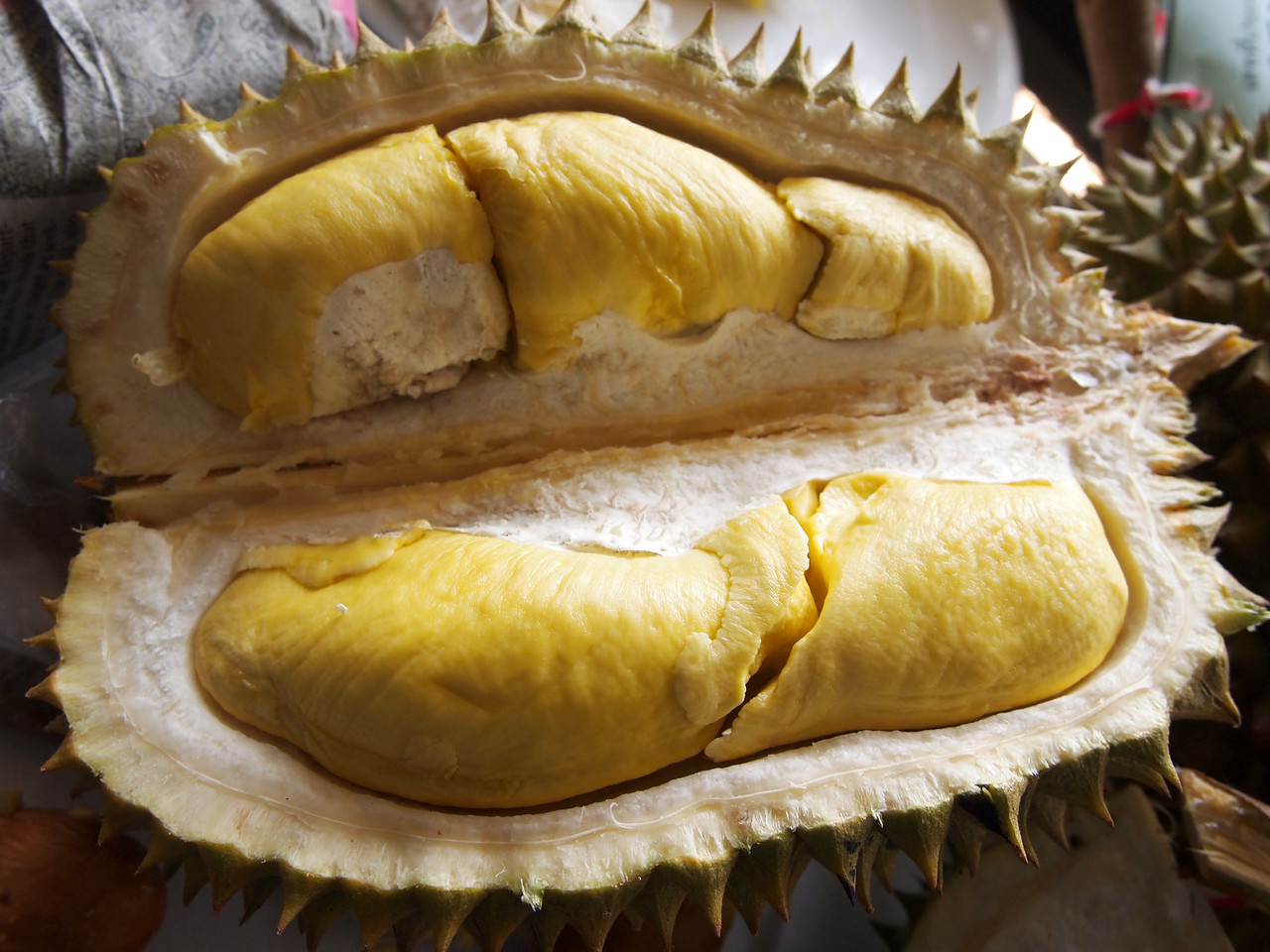 Complete Guide to Thailand's 234 Durians: http://wp.me/p54nbK-49r