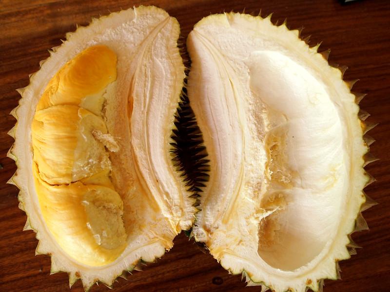 Sao Chom Durian