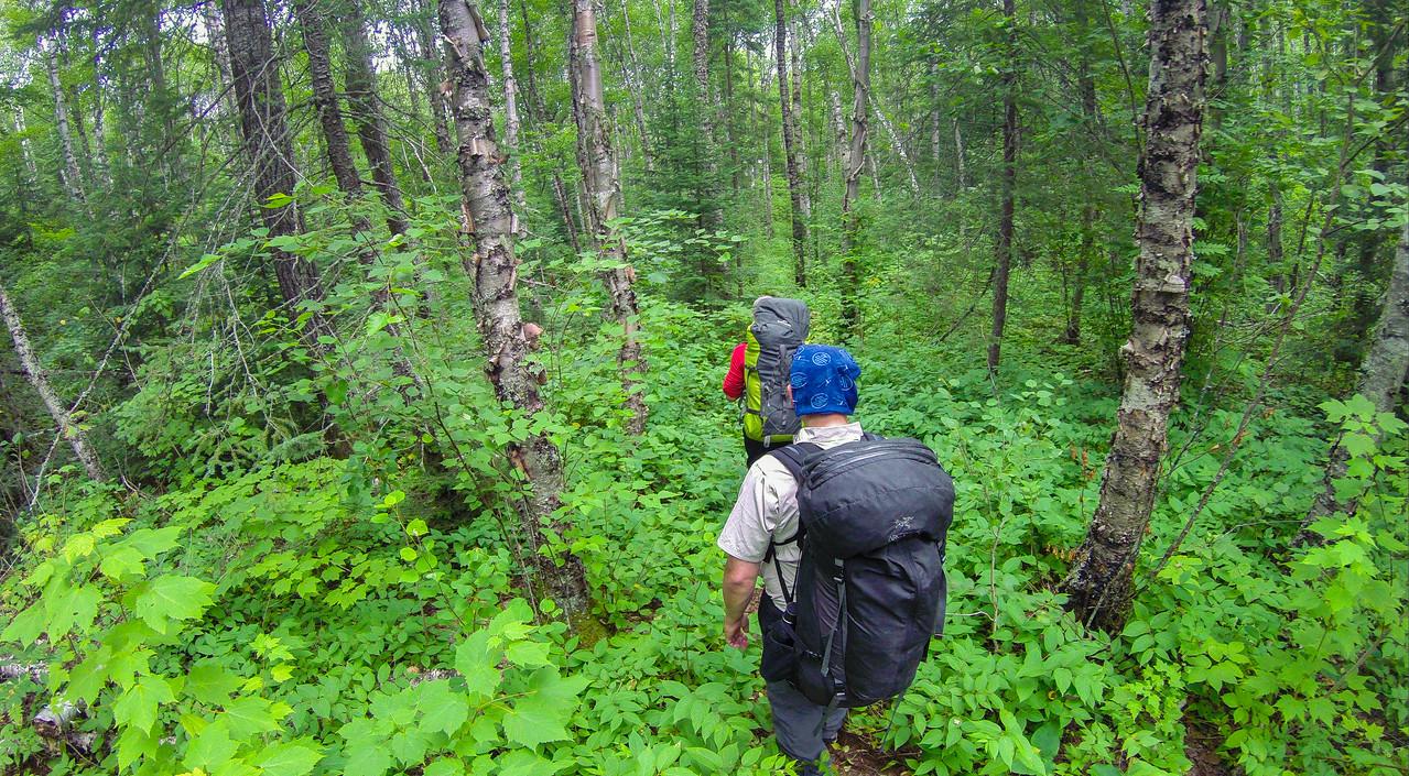 navigating wilderness