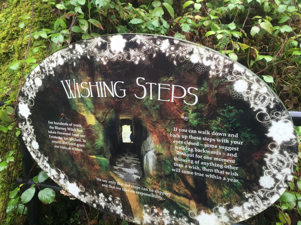 Blarney Castle Wishing Steps