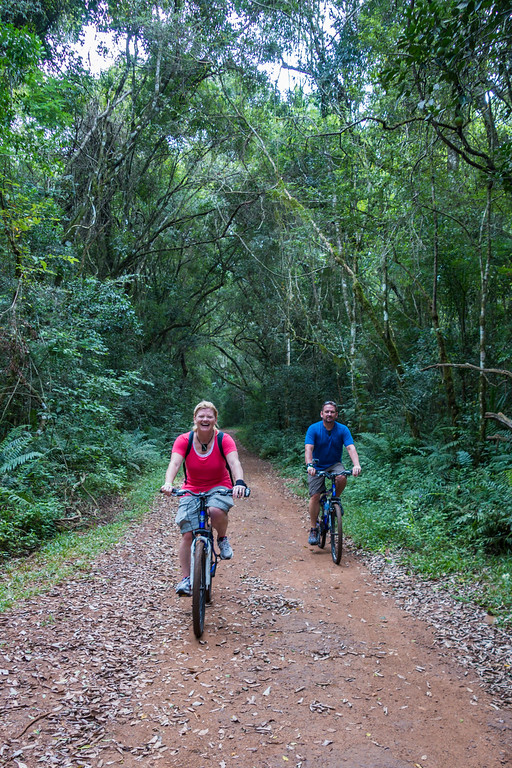 Things to do in Iguassu Falls - cycling in the rainforest