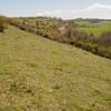 Magdalen Hill Down 5864