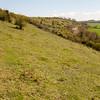 Magdalen Hill Down 5862