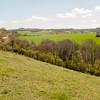 Magdalen Hill Down 5860