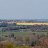 Magdalen Hill Down 8304