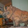Weston Park Museum, Sheffield 7631
