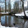 Endcliffe Park P1240415