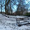 Endcliffe Park P1240413