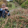 photographing the Long-tailed Blue ♀, Lampides boeticus 0003