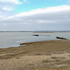 Pagham Harbour (3)