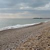 Pagham Harbour (6)