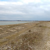 Pagham Harbour (4)