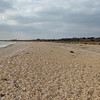 Pagham Harbour (7)