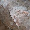 Lesser Treble-bar, Aplocera efformata 0165