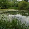 Woods Mill lake 095